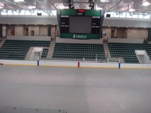 UltraDeck Ice Cover  Oswego 2