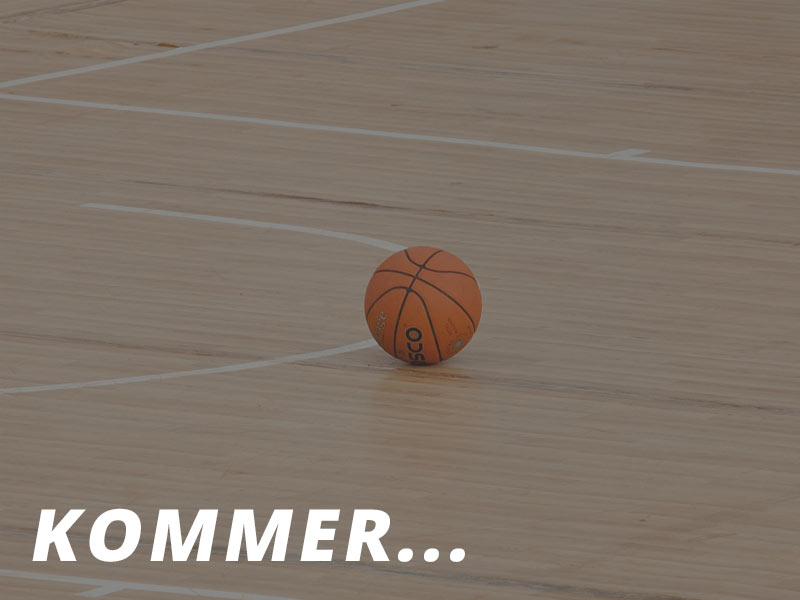 basketballgulv-1